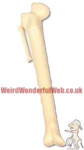 IMAGE: Novelty Bone Pen