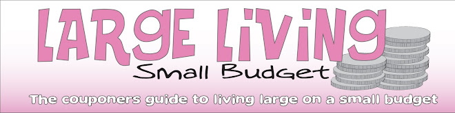 Large Living - Small Budget