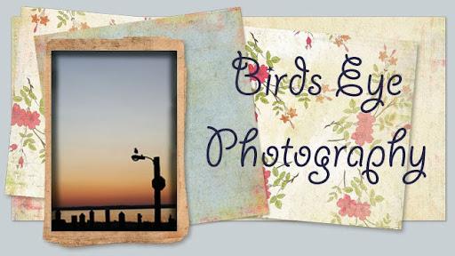 Bird's Eye Photography