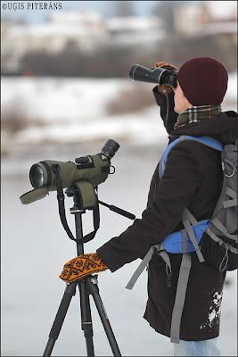 Ritvars Rekmanis vēro putnus Dārziņos