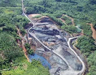 Hutan Lindung Bengkulu Rusak Akibat Pertambangan