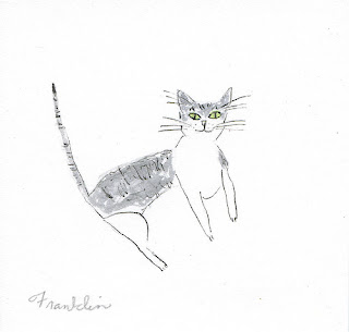 Franklin (when he was a tiny kitten) by Vivienne Strauss
