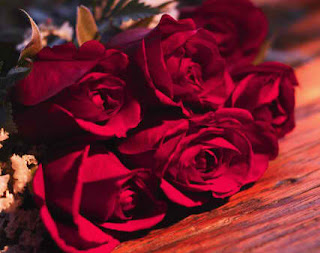Valentines Roses on Valentines Roses Jpg