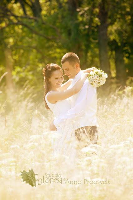 pulmafoto- pruutpaar kuldsel aasal