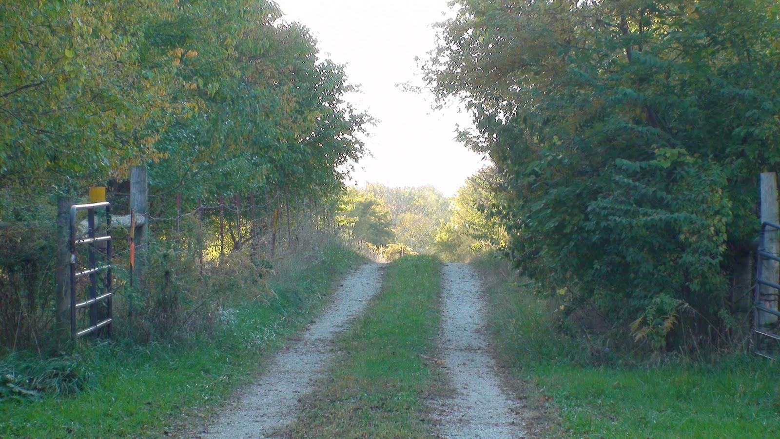 Illinois will county manhattan - Bailey Bridge Trail Midewin National Tallgrass Prairie