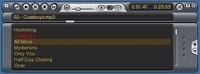 VLC winamp skin