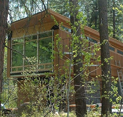 Wooden House Design Ideas in the forest