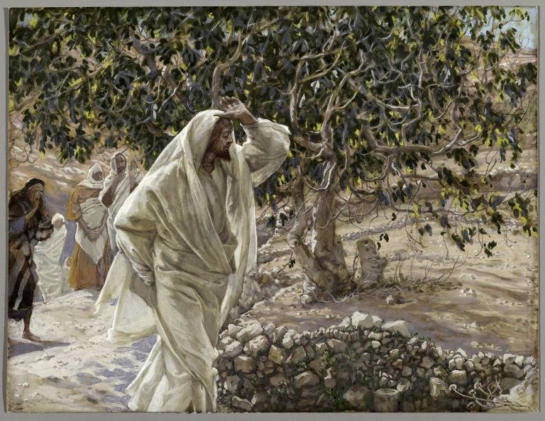 finding jesus in the wanderer essay