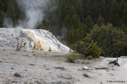 Mammoth Hot Springs Scenic
