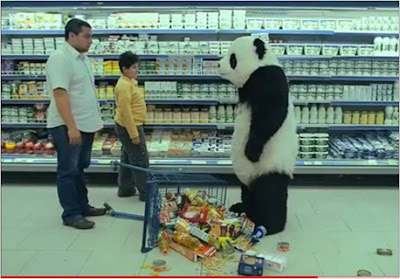 Panda Cheese Never say no
