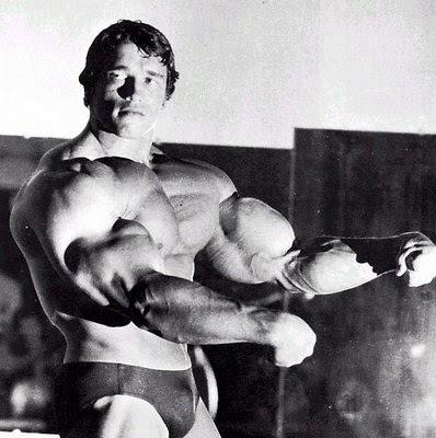 arnold schwarzenegger workout. arnold schwarzenegger workout