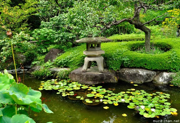 Beauty Love And Soul Amazing Garden