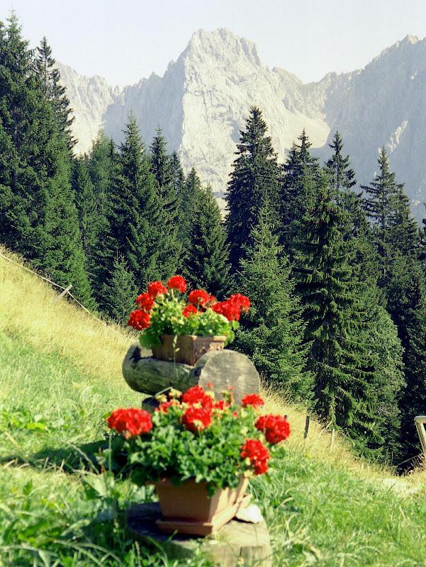 Blick von der Terrasse Vorderkaiserfeldenhütte ins Kaisertal 16