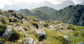 Gipfelblick zum Wilden Kaiser 09