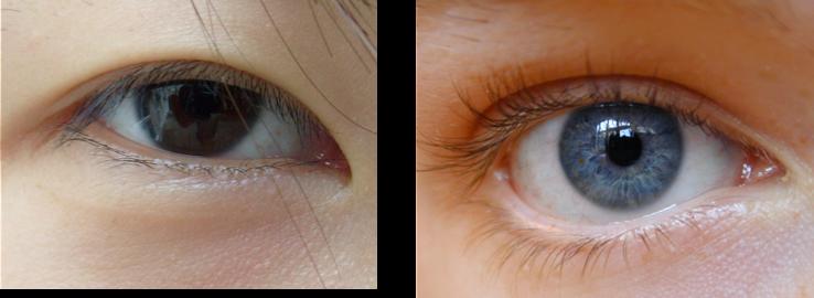 Evolution Of Asian Eyes 11