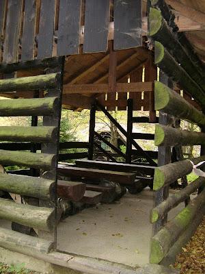 Šumska učionica iz blizine
