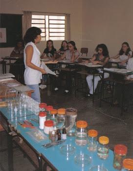 FORMAÇÃO CONTINUADA DE PROFESSORES DO ENSINO FUNDAMENTAL - ESCOLA DA TERRA