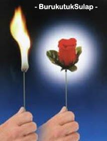 Luluhkan Hati Cewek dengan Trik Bunga Ini