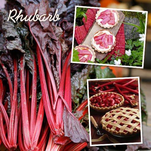 ingredient of the month - rhubarb