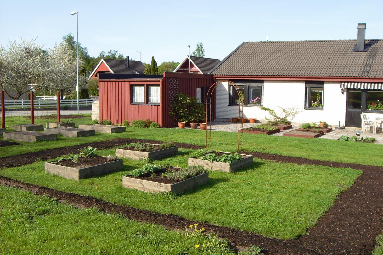 Fägring och mylla och allt trädgårdens goda: Min trädgård. Del 2.