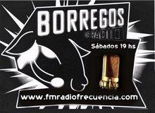 BORREGOS DE RADIO