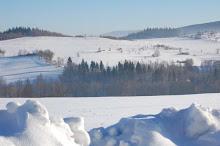 Oswoić zimę