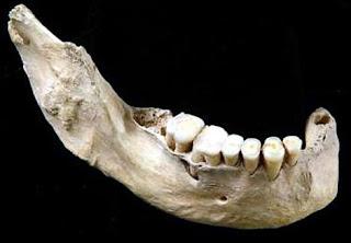 Mandíbula del 'Homo sapiens' primitivo de China. / E. Trinkaus