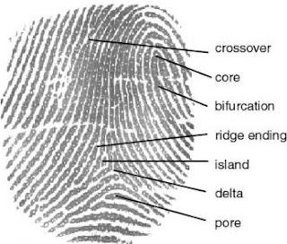 Definición de los detalles de una huella digital