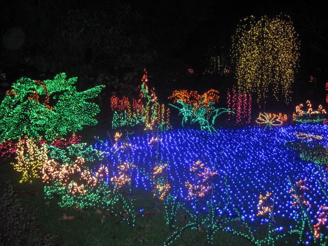 The Veals Bellevue Botanical Gardens