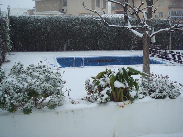 Año de nieves año de...