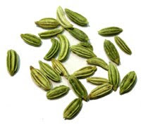 Fennel In Urdu