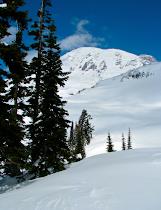 Mt. Rainier Winter Blank Cards