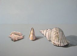 CARGOLS DE MAR - SEA SHELLS