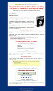 Bluegill Wordpress Landing Page  Template