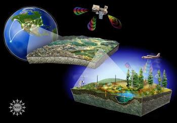 NSF Macroecosystems Biology