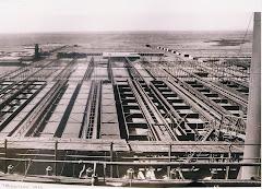 Coya Sur Año 1920