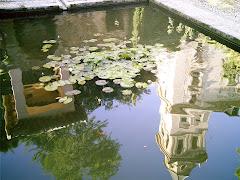 Reflejo en un estanque de La Alhambra...