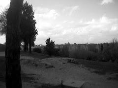 """""""Parque de las Siete Tetas (II)"""", por Antonio"""