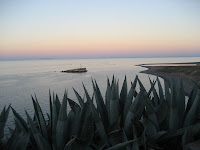Back from Baja!