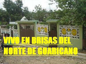 BRISAS DEL NORTE DE GUARICANO