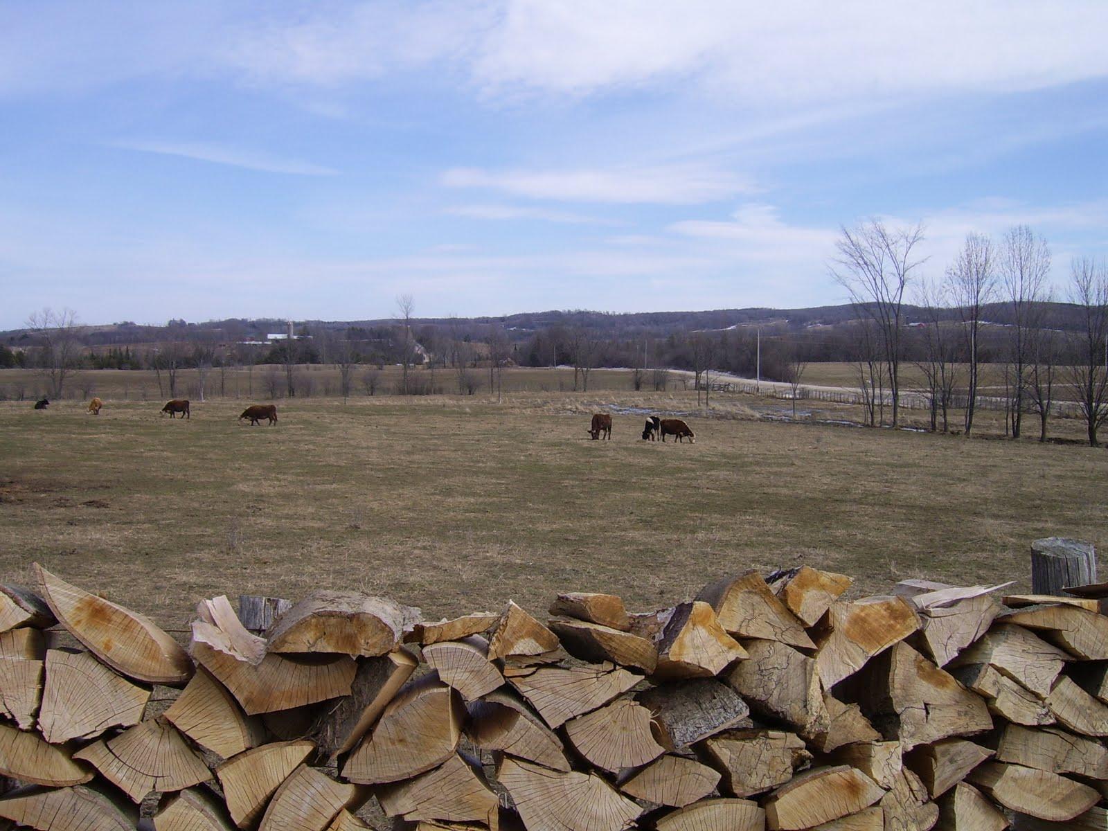 http://3.bp.blogspot.com/_Sv08qmYwUpE/TBkz8YQWe-I/AAAAAAAACFk/hF9fw9K0nJY/s1600/Ramage+Farm+March+2010+014.jpg