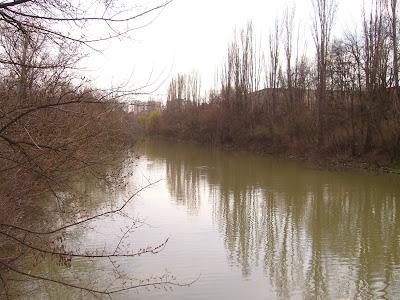 Yambol's Tundzha River - View Looking North
