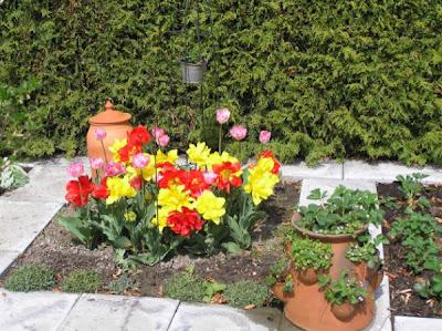 Bliss my organic ornamental kitchen garden for Ornamental kitchen garden design