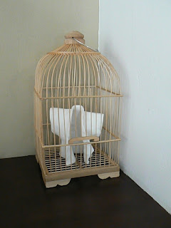 Porcelain Jacket in birdcage