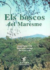 Tot sobre els boscos del Maresme