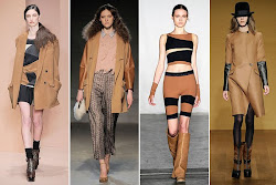 Fall 2010 Top Color Trend- Camel