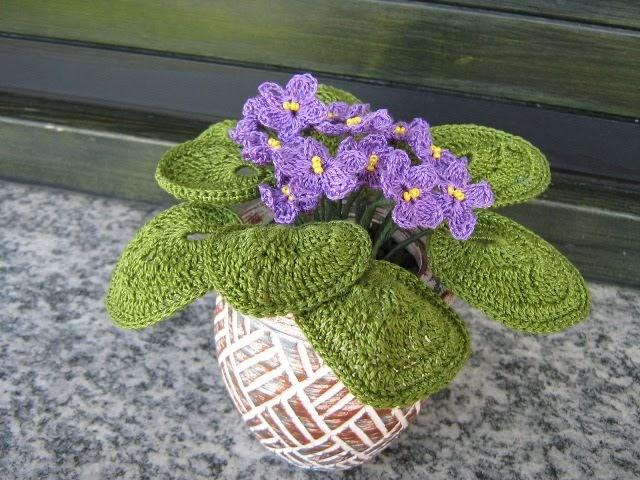 Le idee di carla66 violette africane for Violette africane