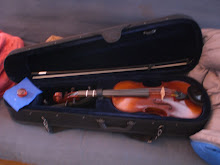 The lovely violin