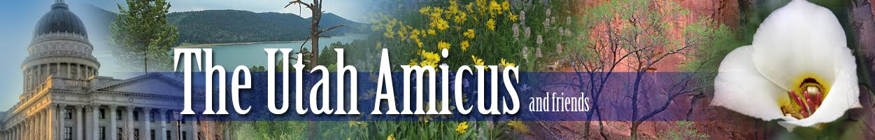 THE UTAH AMICUS