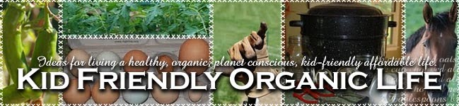 Kid Friendly Organic Life